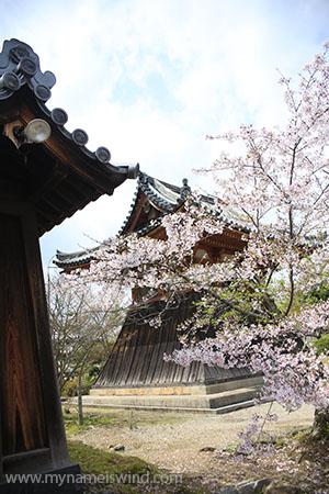 Nara ciekawe miejsca