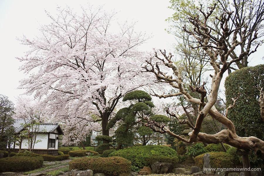 Japonia dawniej, Zwiedzanie Kawagoe