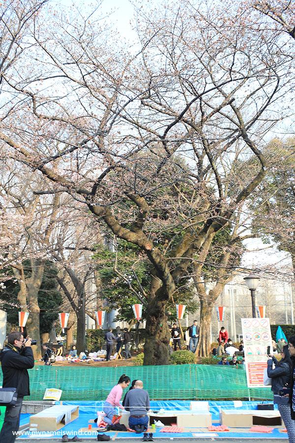 Ciekawe miejsca w Tokio: park Ueno