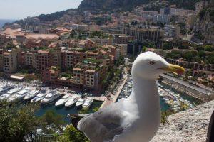Monako i tajemnice kasyna