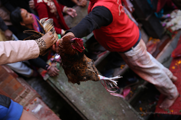 nepal dakshinkali