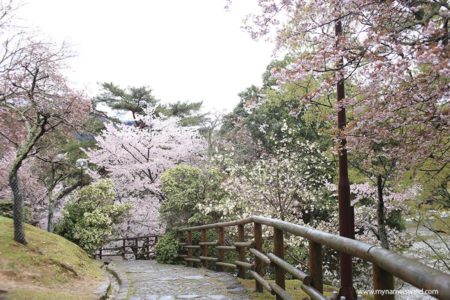 Nara atrakcje