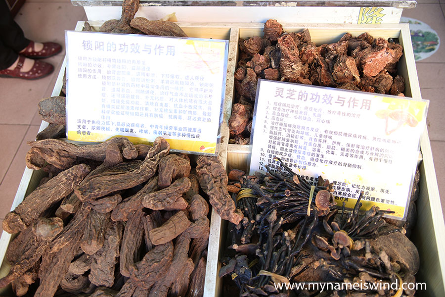 Xining, Chiny. Medycyna chińska