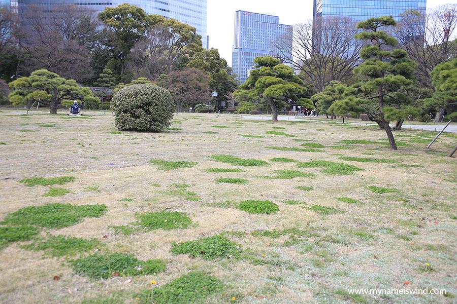 japonskie ogrody