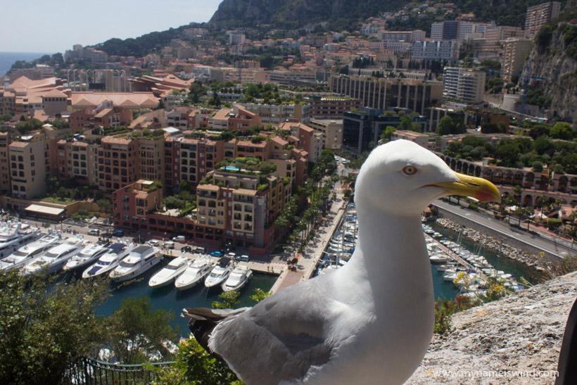 Monako atrakcje turystyczne