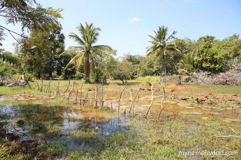 Sambor Prei Kuk Kambodża